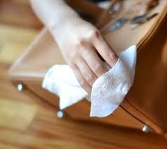 handbag-care
